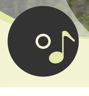 Audio-CDs